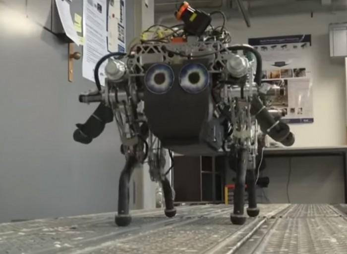 StarlETH机器狗