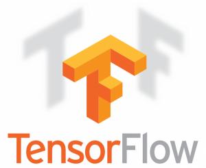 2FNLTensorFlow-600x489