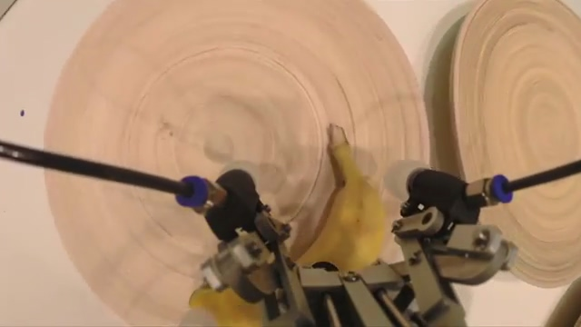 Robot arm sorts and stacks delicate fruits.mp4_20160201_085321.654