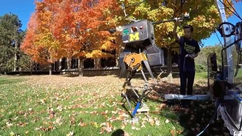 marlo-enjoys-the-michigan-fall-colors-720p-mp4_20161107_165754-567-mobile