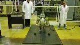 俄罗斯太空机器人 按照语音提示做俯卧撑